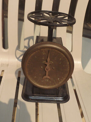 Antique 25 Lb Kitchen Scale w/Brass Face & Boston Store Chicago Advertising