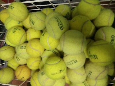 223 used tennis balls Coburg great for the dogs