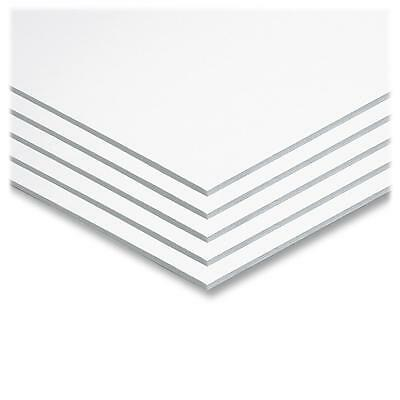 "Pacon Foam Board 20""x30"" 25/CT White 5540"