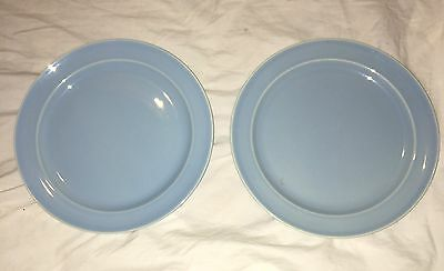 LU RAY Vintage Pastel Dinner Plates Set of Two  Blue  Solids 9 Inch