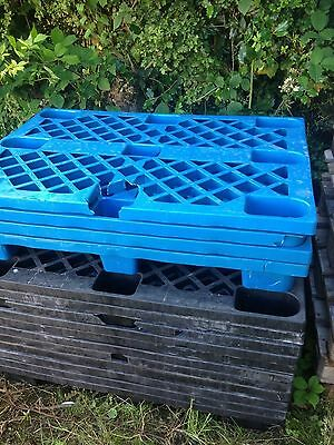 plastic pallets storage shed bases clearance 30 available