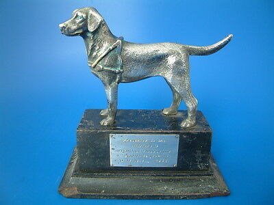 "Silver Plated Labrador Guide Dog - 'GDBA 1968' - 6.5""/17cm long - 1.2kg"