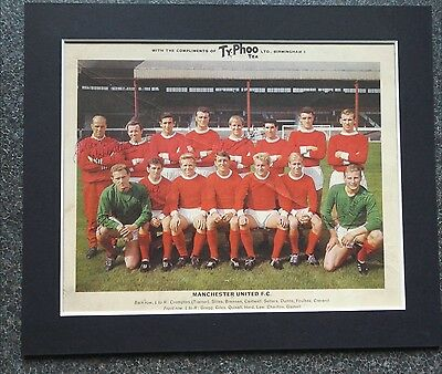 "MANCHESTER UNITED SIGNED TYPHOO TEA TEAM CARD 12"" x 10"" MOUNT CIRCA 1967 x 5"