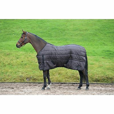 Masta Basic 200g Standard Neck Horse Pony Equestrian Heavy Weight Stable Rug