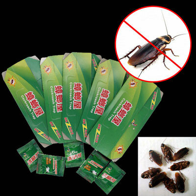 Cockroach Killer Sticky Catcher Traps Non-toxic Cockroaches House Design Gintrap
