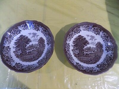 J&G Meakin Romantic England Ironstone Shallow Bowl Set of 2 Brown