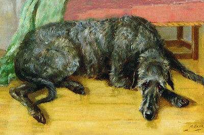 Scottish Deerhound Dog 1954 by Mabel Gear - LARGE New Blank Note Cards