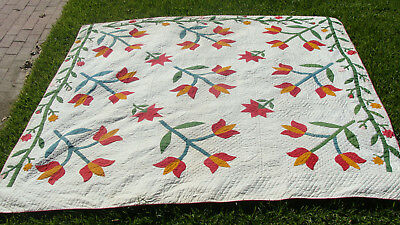 "Antique tulip applique all hand sewn & quilted quilt w vine border, 79"" x 77"" r"