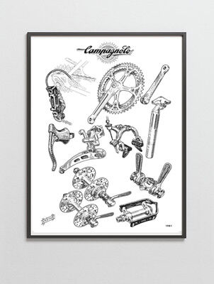 Campagnolo Record / Nuovo Record groupset poster 1981