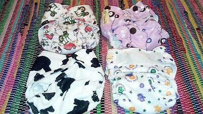 Reusable pocket nappies Dudeybaba Little Bloom