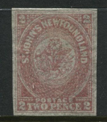Newfoundland QV 1861 2d rose mint o.g. 4 large margins