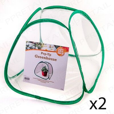 2 x Mini PVC Greenhouse Plant Pot COVERS SMALL PLANTS & POTS Pop Up Tent Garden
