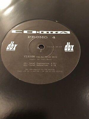 "Matt Goss Co*bra Cobra - Super Rare Promo 12"" Of 'Vision'"