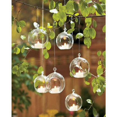 Clear Glass Flower Plant Stand/Hanging Vase Ball Terrarium Container Decor Hot