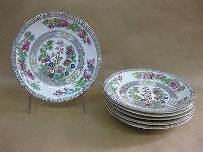 6 Aynsley Indian Tree Saucers ~ A1173 ~ English China
