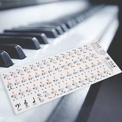 Line-Spectrum Piano Music Keyboard Sticker Label Guided Electronic-Organ