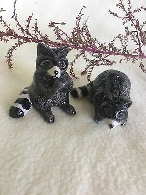 Salt And Pepper Shakers Porcelain Racoon Animal Figurines