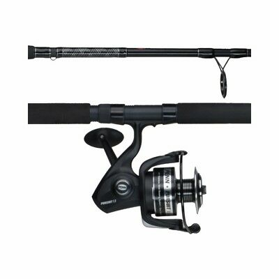 Penn PURII8000102H Pursuit II Spinning Combo