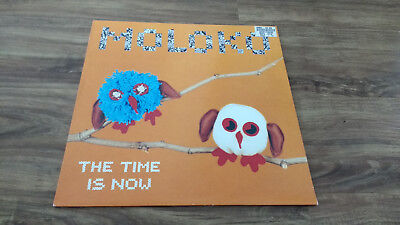 """Moloko - The Time Is Now 12"""" Vinyl - Echo 2000 ECSY88 - House / Trance"""