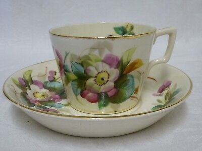 Antique Edwardian Cup & Saucer Hand Painted with Flowers