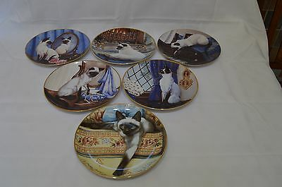 Set of Six Limited Edition Siamese Cat Plates by Daphne Baxter for Franklin Mint