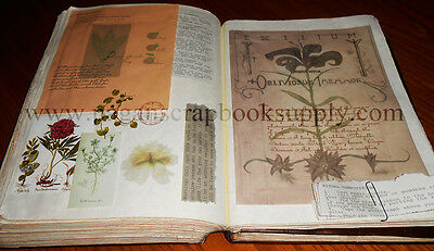 Practical Magic Owens' Family Spell Book - Leather Bound Book of Shadows