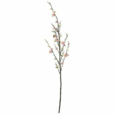NEW Light Pink Quince Blossom 130Cm Stem By Freedom
