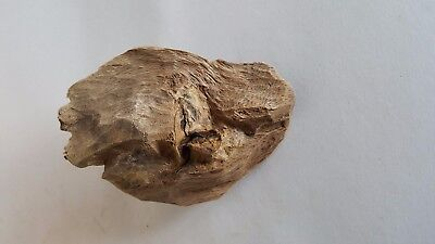 Old Dry Agarwood Chip From Vietnam  , Good Scent .....