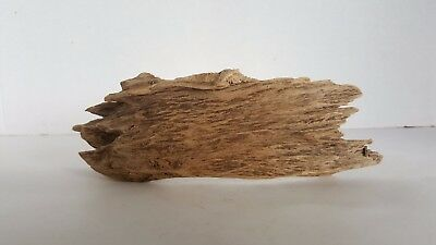 Old Dry Agarwood Oud  , Good Scent  , Old Wood ...