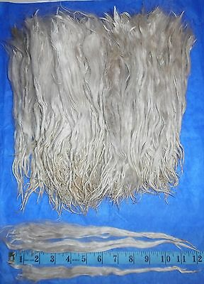 Suri Alpaca Locks ~ White ~ 11+ inches ~ Doll hair ~ Lock Spinning ~ 2 oz.