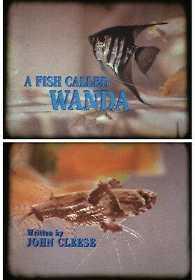 Super 8mm A FISH CALLED WANDA John Cleese Feature Film 3 x 600ft Optical Sound