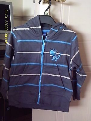 Tesco Cherokee Boys Hooded Jacket Grey With  Blue & Beige Stripes And Dinosaur