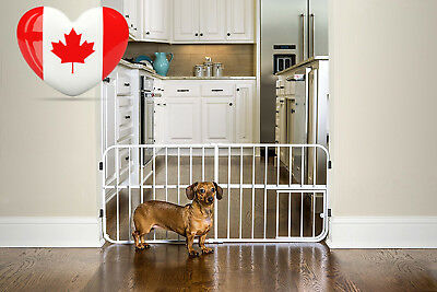Carlson Pet Products 0618DS Mini Tuffy Metal Expandable Gate