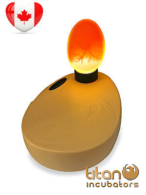 Egg Candler High Intensity For Thick/Thin Dark/Light Shells By Titan Incubators