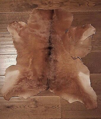 Exotic Cowhide Rug Real Hair-On Fur Leather Natural Cow Skin Peau vache 33x33""