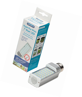 Interpet LED Energy Saving Lamp to Fit All Fish Pod and Fish Box Aquariums White