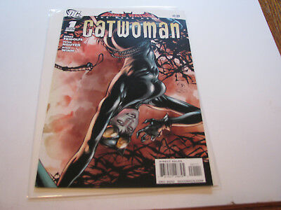 Bruce Wayne: The Road Home: Catwoman #1 (December 2010, DC)