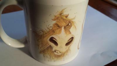 Horse Equine Cranky Grumpy Mug Coffee Cup NEXT TO GET ON MY NERVES? Leanin Crane