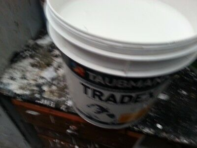 Taubmans 15 Litre Trade Pro Washable Interior  Low/sheen Whitish Color Paint