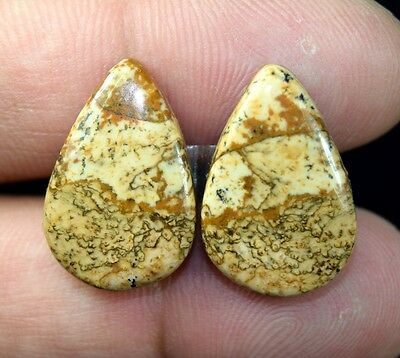 26.30 Cts. 100% Natural Picture Jasper Pear Cabochon Matched Pair Gemstones