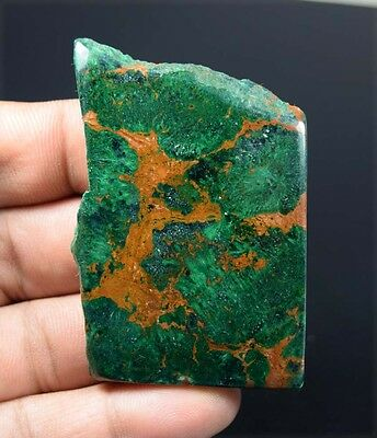 181.10 Ct.100 % Natural Designer Malachite Chrysocolla Rough Slice For Cabochons