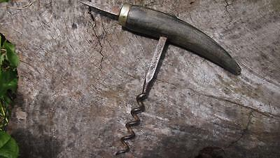 Antique Federation Corkscrew - Cow Horn w Silver Mounted 'Grower's Tool' Spike