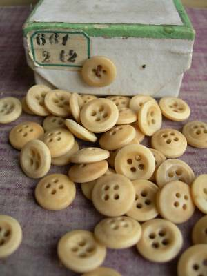 Box 88 small antique French tagua nut / corozo buttons