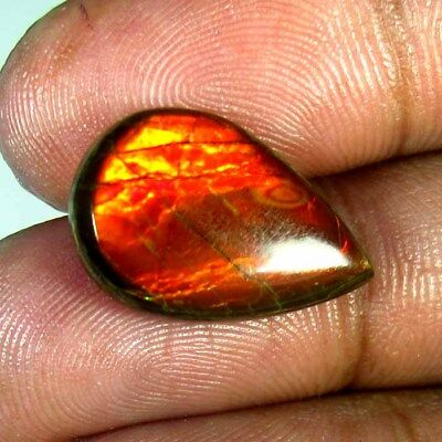 9.95 Ct 100% Natural Ammolite Ring Size 12 X 20 Mm Rainbow Superb Power Cabochon