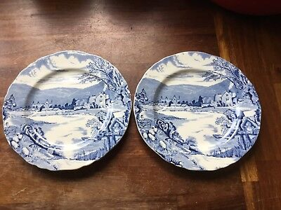 "Pair Of 2 Antique Alfred Meakin ""Tintern"" Plates"