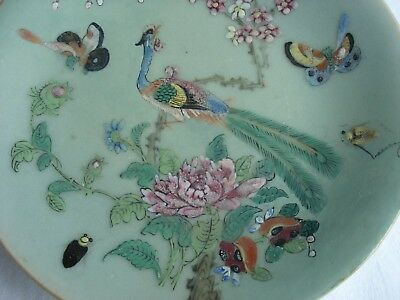 Lovely Chinese Celedon Hand Decorated Plate
