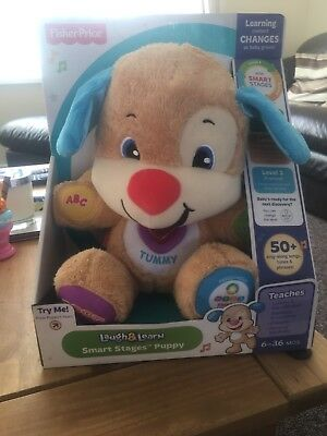 NEW In Box Fisher Price Laugh & Learn Bear