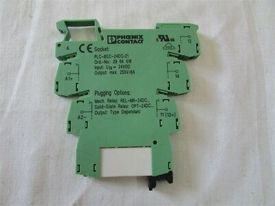 Phoenix Contact Socket PLC-BSC-24DC/21 E-42
