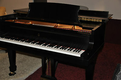 "Steinway & Sons B 1999 All Original   A lot of Blume ""Maestro"" Service Package"