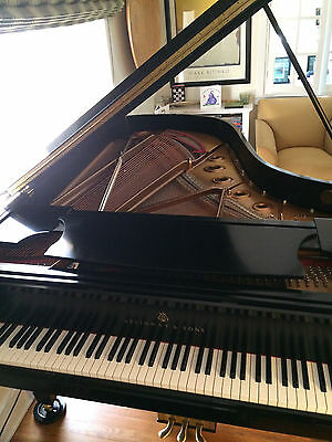 "Steinway & Sons Model B 2003  Hint of Darkness  ""Maestro"" Service Package"